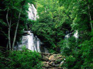 selva-cascada